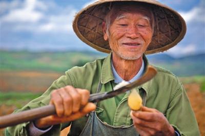 """""""多多农园""""助力贫困地区农产品热销"""